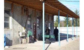 Economia și agenții economici ai comunei